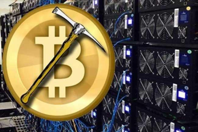 Mining криптовалют понемногу превращается в огромную отрасль