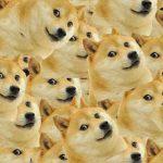 Что такое dogecoin? Курс и преимущества валюты