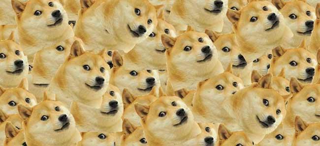 Особенности Dogecoin