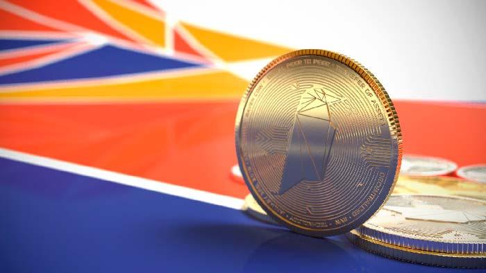 перспектива криптовалюты RVN