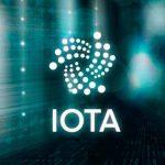 Как создать и открыть IOTa кошелек?
